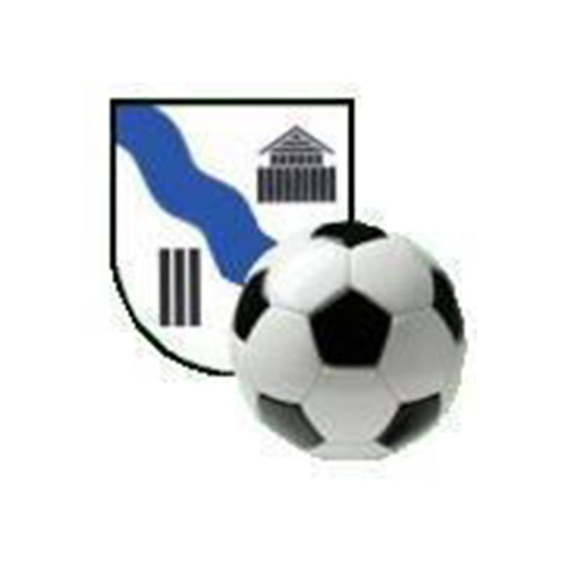 TJ Sokol Staré Hradiště logo