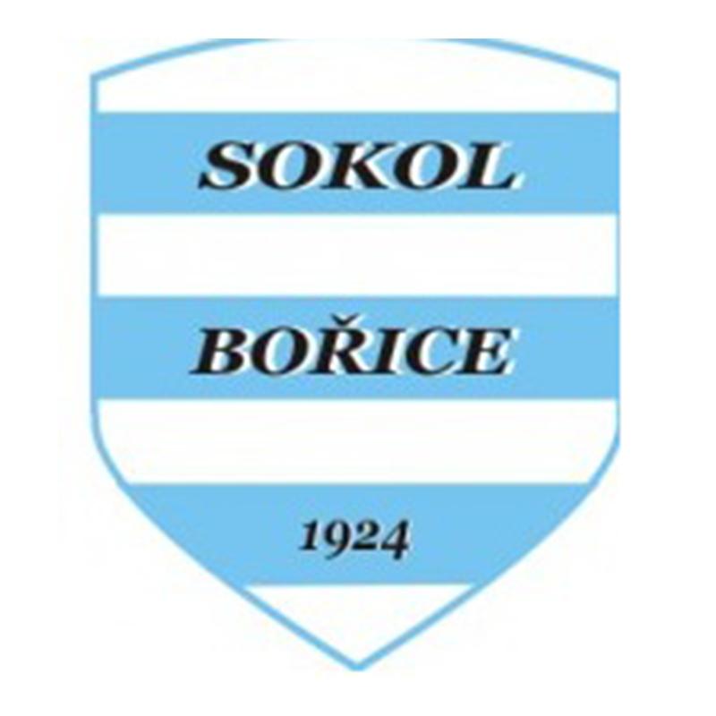 logo tj sokol borice